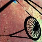 """smoni """""""" (2013-09-08 16:24:56) komentarzy: 2, ostatni: Pajączek w pajęczynie:). Fajne spojrzenie"""