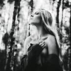 """JuanitaCh """"*"""" (2013-10-07 21:30:24) komentarzy: 5, ostatni: Zapach lasu. Troszkę, jak modlitwa. Wspaniale."""