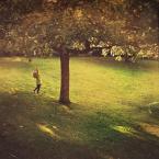 """slw """"Jesienne jabłuszka"""" (2013-10-13 20:41:48) komentarzy: 7, ostatni: Urocze"""