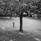 """slw """"Zbieramy jabłuszka"""" (2013-10-14 12:14:47) komentarzy: 3, ostatni: +"""