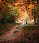"""Mistinesseye """"Walk to autumn"""" (2013-10-15 16:50:14) komentarzy: 1, ostatni: piękne barwy :)"""