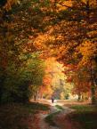 """Mistinesseye """"colors of autumn"""" (2013-10-15 20:13:46) komentarzy: 3, ostatni: Lubię takie zawijce i takie kolory :D"""
