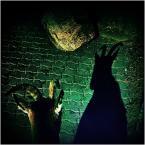 """jacek krefft """"666"""" (2013-10-27 11:44:53) komentarzy: 3, ostatni: Fotokozioł....;)"""