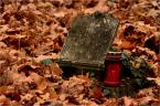 """barszczon """"Dzień Pamięci..."""" (2013-11-01 20:44:56) komentarzy: 2, ostatni: Przyczna moderacji: Niestety jakość wykonania zdjęcia uniemożliwia jego prezentację na forum fotograficznym. Zachęcamy jednak do dalszych prób, mamy nadzieję ze bedą udane :)"""