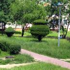 """miastokielce """"Osiedle Na Stoku; Kielce"""" (2013-11-05 08:13:05) komentarzy: 1, ostatni: Bosz...."""