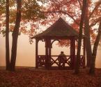 """zazielona """"jesienna kontemplacja..."""" (2013-11-08 21:39:26) komentarzy: 2, ostatni: Mgła otula, nic nie rozprasza myśli :)"""