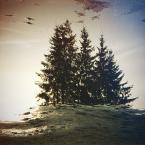 """dead voice. """"sennie"""" (2013-11-14 14:07:50) komentarzy: 1, ostatni: somnambulicznie onirycznie lucidowo dreamowo"""
