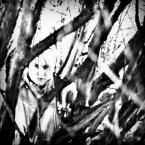 """IV Król """"*"""" (2013-11-27 15:53:19) komentarzy: 4, ostatni: kadr z filmu sensacyjnego"""