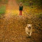 """wlamparski """"Nina i Max"""" (2013-12-07 09:09:48) komentarzy: 10, ostatni: Świetne"""