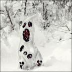 """Miras40 """"Duch zimy"""" (2013-12-12 12:07:21) komentarzy: 33, ostatni: ostatnio na fb popularna była fota... gdzie na pierwszym planie była gęba przerażonego bałwana, a za jego plecami krwawiące zwłoki jego kolegów :). Do mnie trafia taki humor, czarny ale  robi za dobry kontrast dla mdłości, które miewam od tych..."""