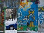 """Lusy """"dozór"""" (2013-12-19 21:55:14) komentarzy: 4, ostatni: fajnie uchwycone"""