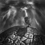 """Arek Kikulski """""""" (2014-01-03 20:34:57) komentarzy: 5, ostatni: właśnie. gdyby to był mózg myłoby ciekawsze."""