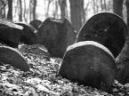 """IV Król """"kamienne tablice"""" (2014-01-26 15:21:09) komentarzy: 8, ostatni: dzięki"""
