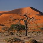 """aston martin """"Pustynia Namib"""" (2014-01-27 16:16:00) komentarzy: 21, ostatni: cieszy oko"""