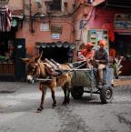 """asiasido """"Marrakesz 1"""" (2014-02-10 19:17:05) komentarzy: 13, ostatni: Uroczo. :)"""
