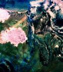 """J.Drobisz """"Improwizacja III"""" (2014-02-18 22:54:05) komentarzy: 3, ostatni: Udana seria..."""