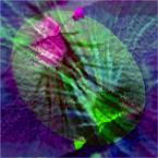 """Kuszący """"Eskalacja życzeń"""" (2014-04-19 17:03:55) komentarzy: 4, ostatni: :-)). p-m."""