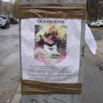 """miastokielce """"Ul. Nowy Świat; Kielce"""" (2014-05-06 20:35:00) komentarzy: 1, ostatni: diamentowe serduszka w obroży prawdopodobnym motywem porwania"""