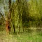"monavida ""..."" (2014-05-06 21:11:25) komentarzy: 16, ostatni: dobre !"