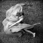 """wlamparski """"motyl"""" (2014-05-19 13:32:01) komentarzy: 1, ostatni: super ujęcie"""