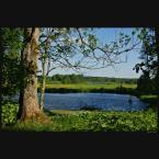 """ramumajana """"dwa jeziorka"""" (2014-05-27 19:30:57) komentarzy: 1, ostatni: strasznie malutkie.. ma w sobie coś przyjemnego:)"""
