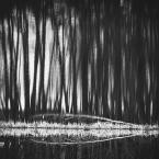 """wlamparski """"cisza"""" (2014-05-29 11:15:13) komentarzy: 4, ostatni: Intrygujące:))"""