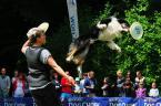 """Kubuś Puchatek """"... Latające psy ..."""" (2014-06-02 21:20:35) komentarzy: 2, ostatni: +"""