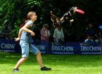 "Kubuś Puchatek ""... Latające psy ..."" (2014-06-02 21:44:25) komentarzy: 2, ostatni: kung-fu pies .... dobry moment"