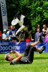 """Kubuś Puchatek """"... Latające psy ..."""" (2014-06-03 16:31:45) komentarzy: 0, ostatni:"""