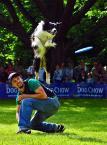"""Kubuś Puchatek """"... Latające psy ..."""" (2014-06-05 19:46:13) komentarzy: 3, ostatni: świetne ujęcie :-)"""