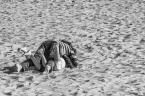 """sandiego """"sezon w pełni..."""" (2014-06-19 20:11:26) komentarzy: 1, ostatni: ratuj się kto może,ałć"""