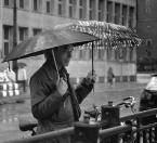"""sandiego """"deszczu się nie boję!"""" (2014-06-22 20:48:30) komentarzy: 3, ostatni: podwójnie bezpieczny gość  :)"""