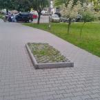 """miastokielce """"Ul. Bohaterów Warszawy; Kielce"""" (2014-07-16 08:49:06) komentarzy: 7, ostatni: pomnik potkniętego przechodnia"""