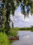 """Maciek Froński """"Narew w Bokinach 2"""" (2014-07-24 08:38:05) komentarzy: 8, ostatni: Dziękuję za wszystkie komentarze."""