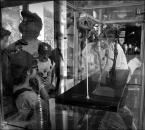 """dreptaq """"fotka z dinozaurem"""" (2014-08-13 12:44:09) komentarzy: 3, ostatni: wyobraźnia nieprzenikniona... :{)"""