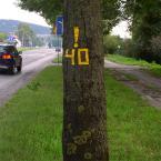 """miastokielce """"Ul. Tarnowska; Kielce"""" (2014-09-01 21:54:10) komentarzy: 0, ostatni:"""