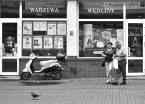 """halcia007 """""""" (2014-09-26 08:01:59) komentarzy: 2, ostatni: niezłe warzywa w tym Opolu ...chyba się wybiorę na zakupy ...tanio ! ..foto +"""