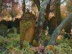 """Foto Fanka """"Jesienny kirkut"""" (2014-10-17 13:41:03) komentarzy: 12, ostatni: a ja uśmiecham się :) dzięki"""