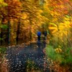 """monavida """"..."""" (2014-10-22 11:26:17) komentarzy: 9, ostatni: piękne,jesienne zawirowania:)"""