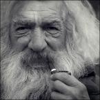 """Miras40 """"Bosman Marek"""" (2014-10-24 07:23:19) komentarzy: 27, ostatni: na takiego wygląda oczy szczere a zdjęcie wszystko dobrze pokazuje :)"""