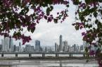 """PREZES LEI """"Panama City..."""" (2014-11-03 20:37:18) komentarzy: 0, ostatni:"""