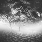 """Arek Kikulski """"..."""" (2014-12-18 19:51:51) komentarzy: 16, ostatni: mocne foto"""