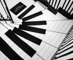 """macieknowak """"Schody fortepianowe"""" (2015-03-31 23:17:42) komentarzy: 7, ostatni: trzeba sie nabiegać, by zagrać....kapitalne :)"""