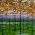 "monavida ""wiosenne mazanie"" (2015-05-01 08:13:59) komentarzy: 9, ostatni: podoba"