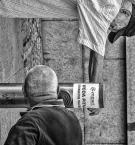 """sandiego """"u wodopoju"""" (2015-08-16 22:15:52) komentarzy: 5, ostatni: Bo do picia (wody) trzeba dwojga …."""