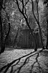 """dreptaq """"paxdziernikowe światłoblaski"""" (2015-10-03 01:35:17) komentarzy: 9, ostatni: ładnie rysowane cienie drzew :)"""