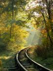 """BJZ """"1-go listopada"""" (2015-11-04 23:05:15) komentarzy: 22, ostatni: Super promienie... Pięknie"""