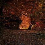 """zake """"gdzieś w Pieninach"""" (2016-02-09 20:31:25) komentarzy: 6, ostatni: b.ładna jesień"""