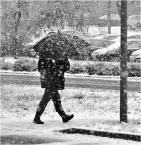 """donasz """"Śnieżenie  (B&W)"""" (2016-02-14 17:59:01) komentarzy: 5, ostatni: ... ładnie śnieży ... podoba :)"""