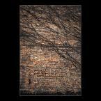"""Mieszko Pierwszy """"przed ścianą"""" (2016-02-18 15:45:06) komentarzy: 1, ostatni: Lubię."""